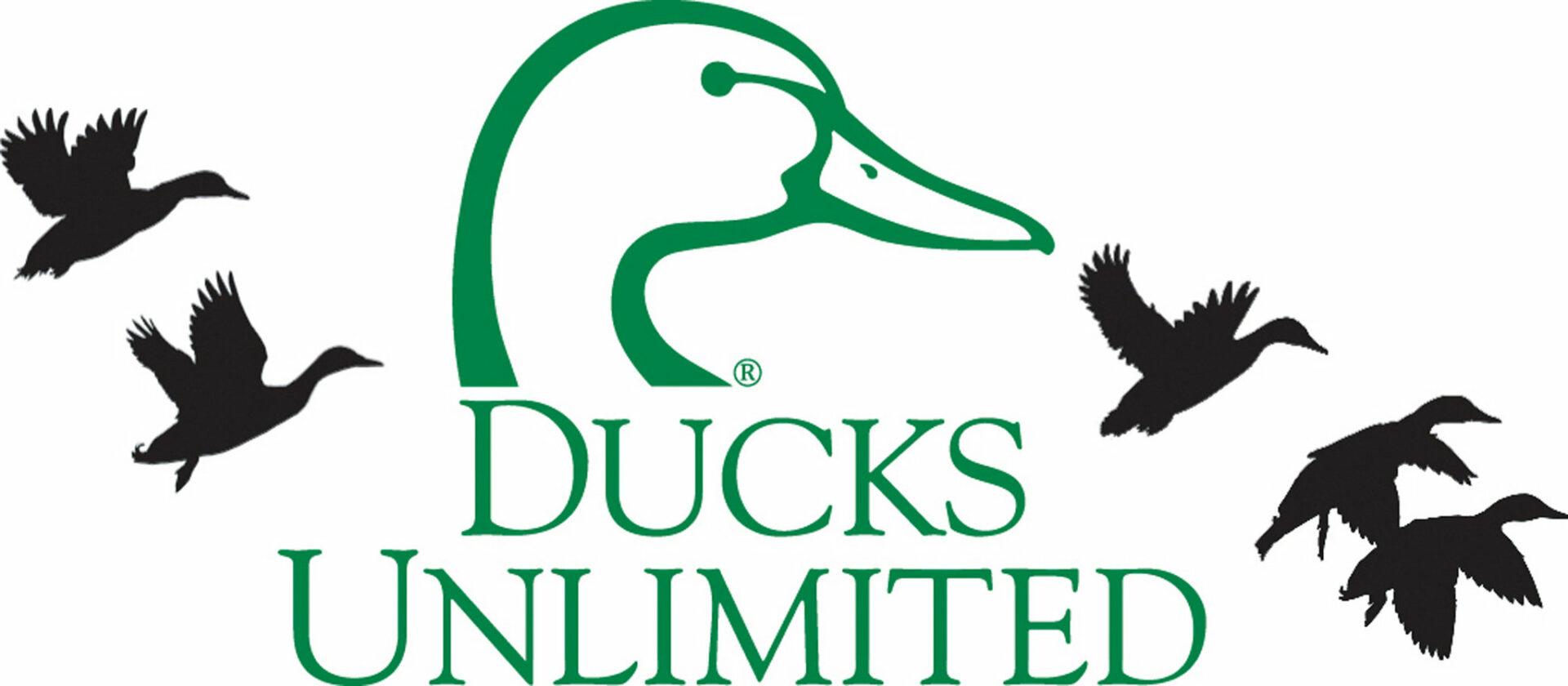 https://nolimitspencer.com/wp-content/uploads/2019/12/DU-Logo-scaled.jpg